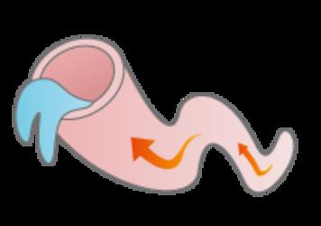 血液循環の改善